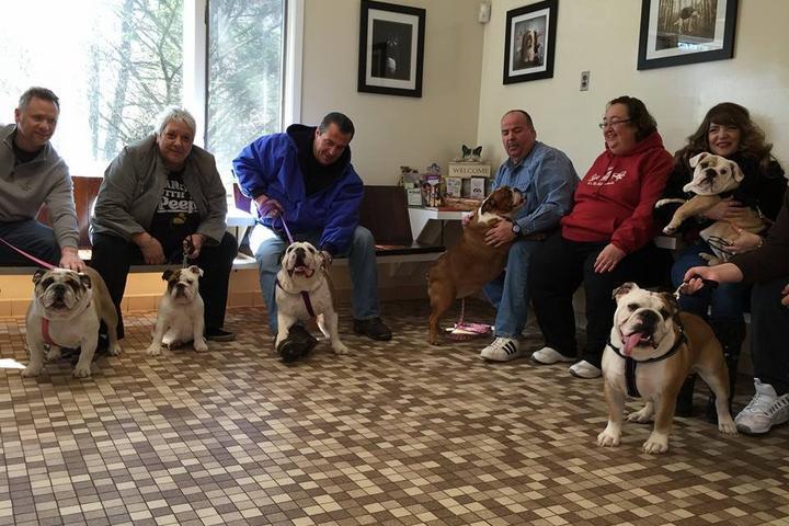 Pet Friendly Richmond Valley Veterinary Practice