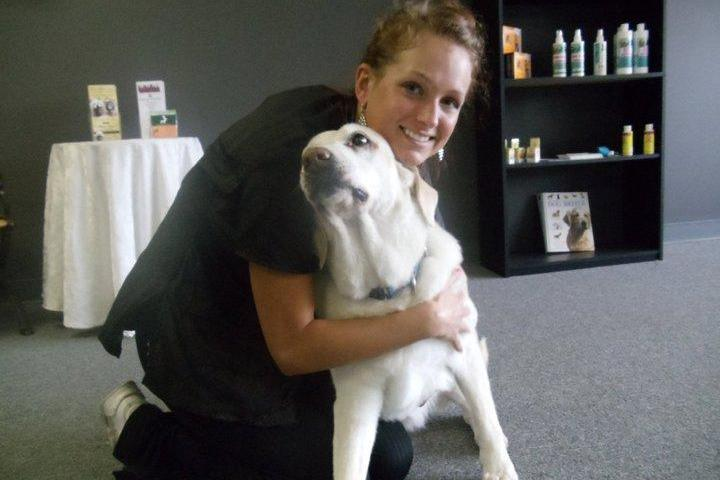 Pet Friendly Doggie Depot Pet Grooming for Dogs