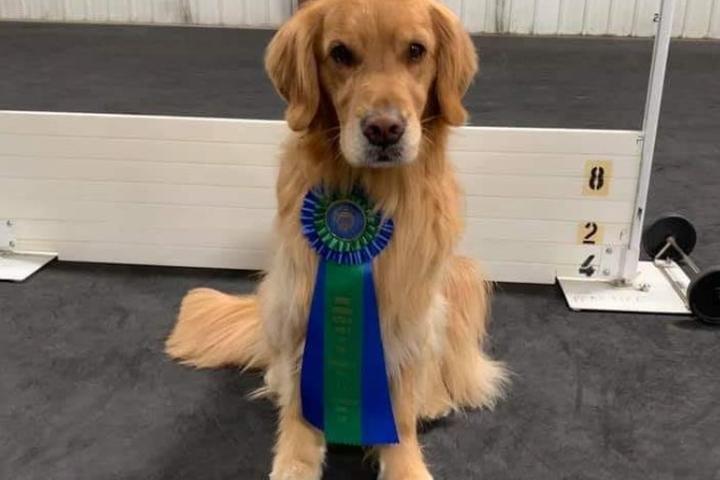 Pet Friendly Fargo-Moorhead Kennel Club