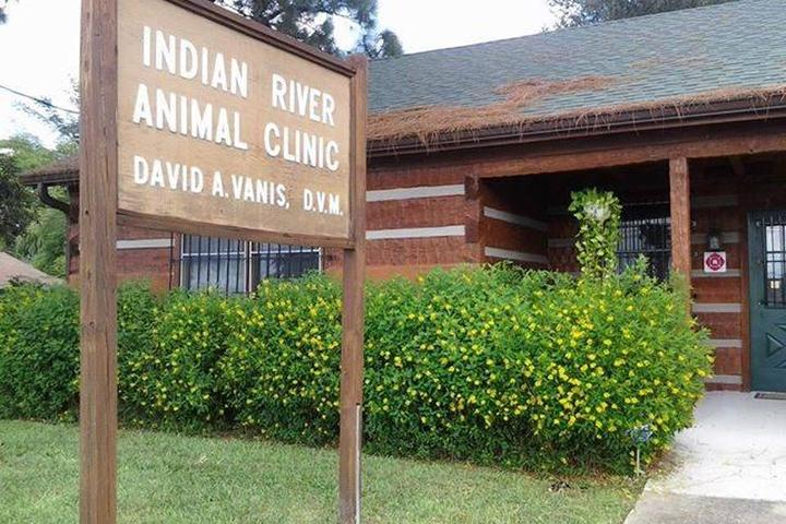 Pet Friendly Indian River Animal Clinic