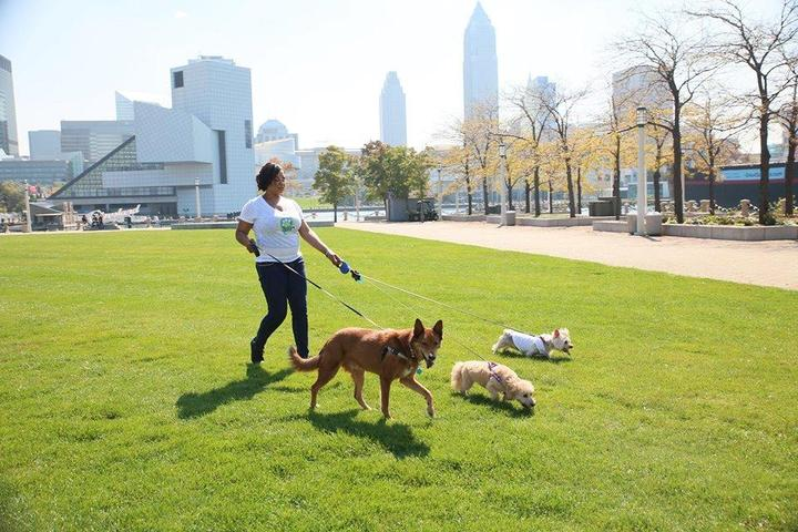 Pet Friendly Max & Alayna's Paws Play
