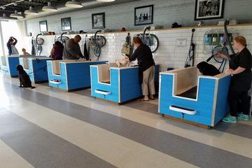 Pet Friendly Metro Animals Pet Wash