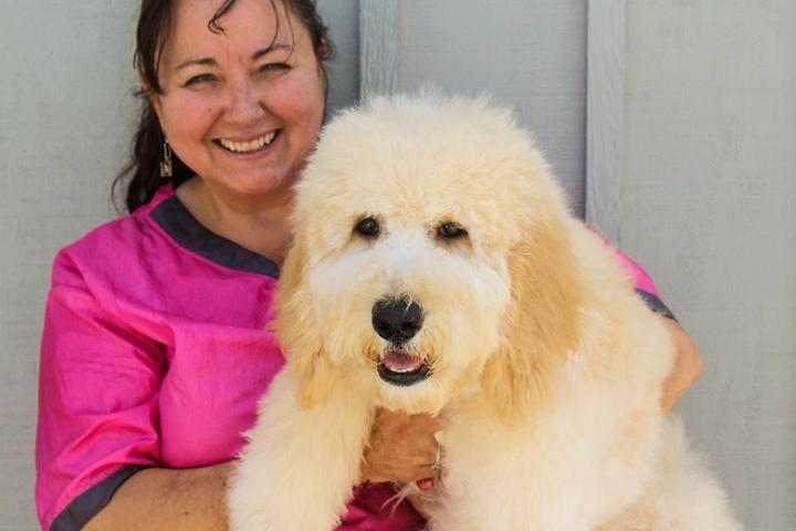 Pet Friendly Hair of the Dog Pet Salon