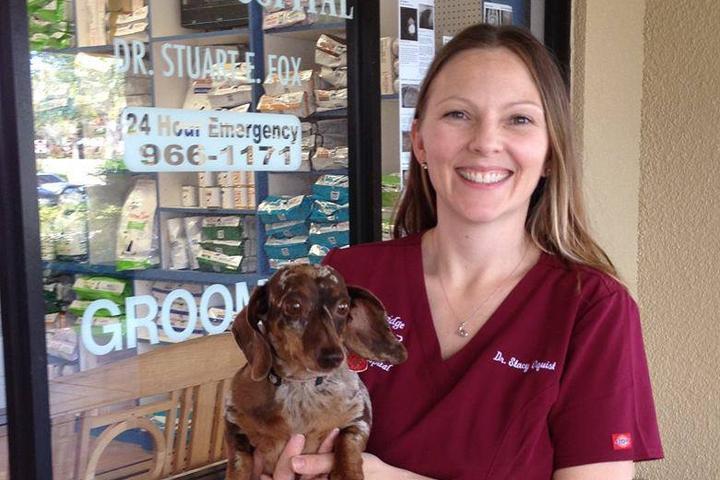 Pet Friendly River Bridge Animal Hospital