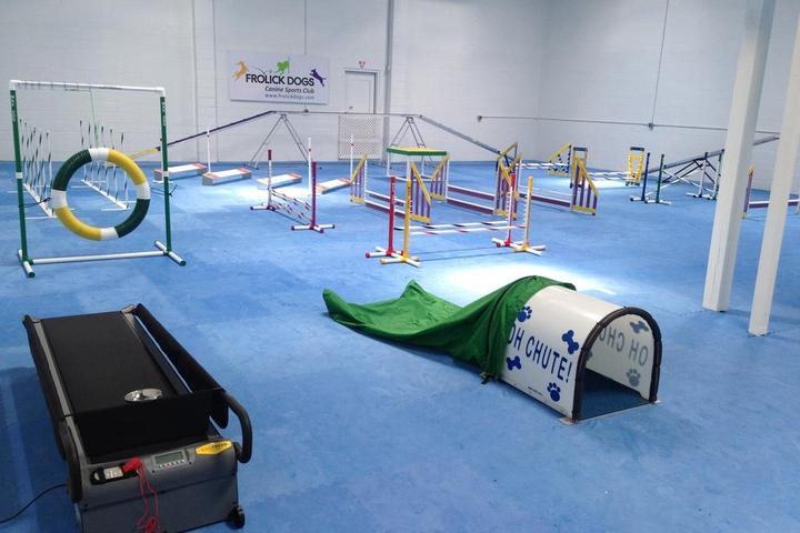 Pet Friendly Frolick Dogs Canine Sports Club