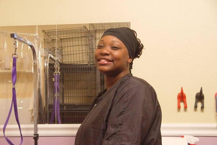 Pet Friendly Doggy Dog Grooming