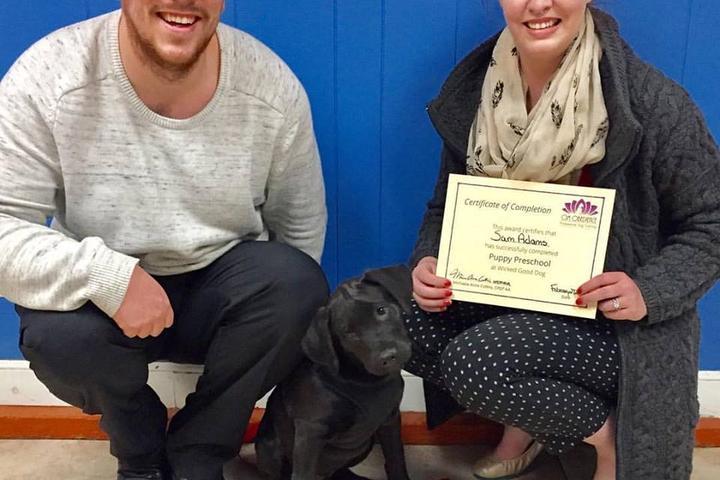 Pet Friendly Om Obedience, Professional Dog Training