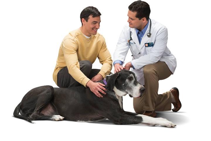 Pet Friendly Banfield Pet Hospital