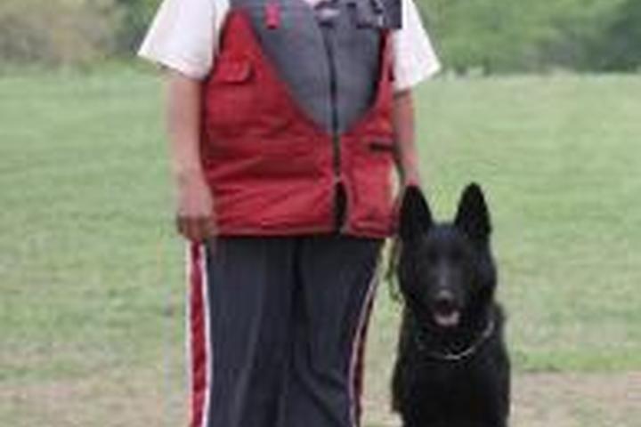Pet Friendly Von Hartwin Dog Training