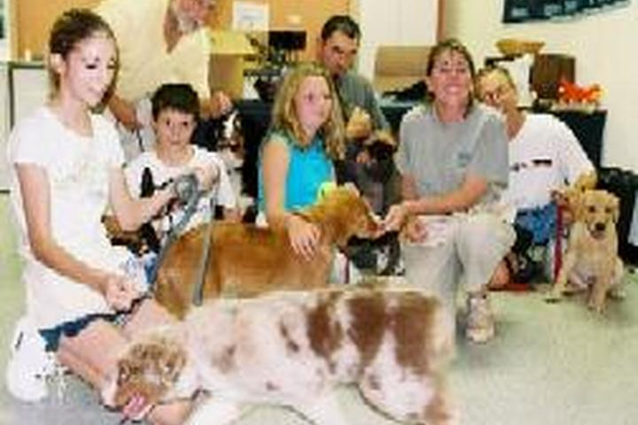 Pet Friendly The Dog Training Club of Chester County