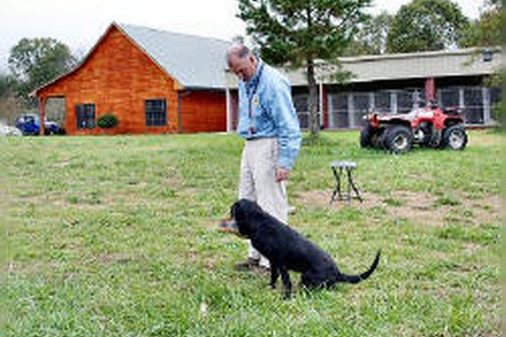 Pet Friendly Oakridge Kennels