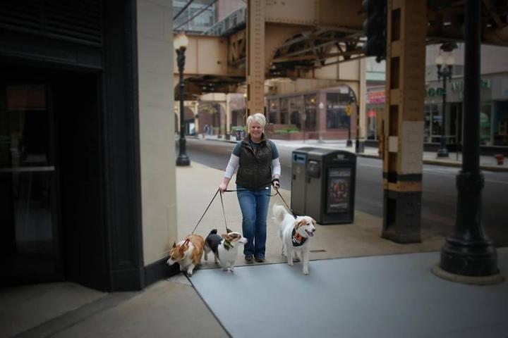 Pet Friendly Out-U-Go! - South Loop