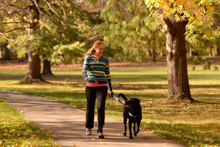 Pet Friendly Heart and Soul Pet Care