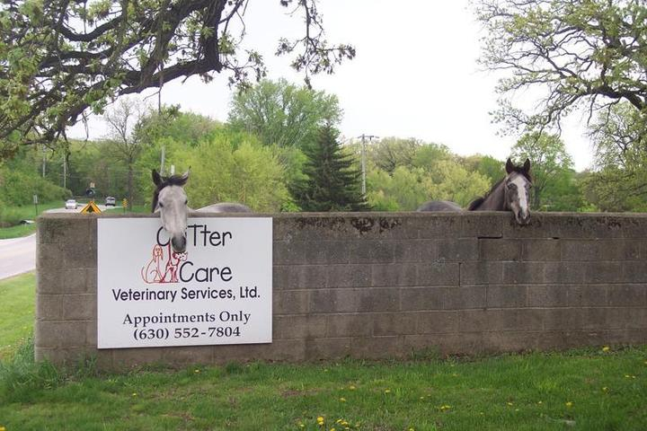 Pet Friendly Critter Care Veterinary Clinic