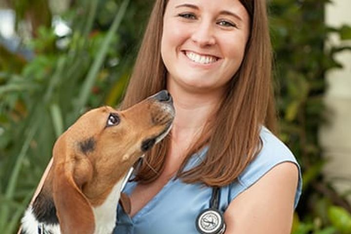 Pet Friendly Welleby Veterinary Hospital