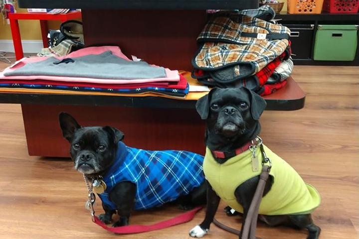 Pet Friendly Barkley's Gourmet Marketplace