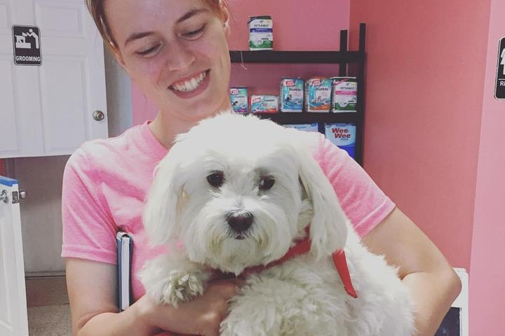 Pet Friendly Wags & Whiskers