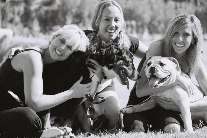 Pet Friendly Doggie-Smyle