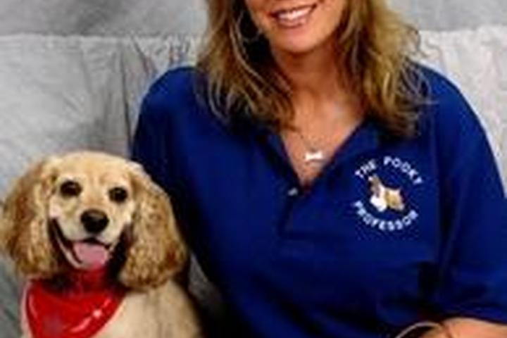 Pet Friendly The Pooky Professor Puppy & Dog Training Services
