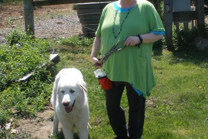 Pet Friendly Best Friends Forever Pet Services, LLC