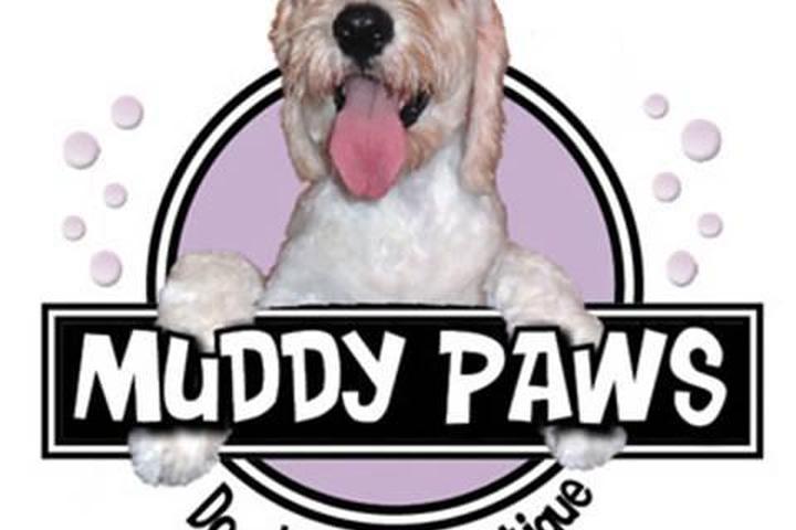 Pet Friendly Muddy Paws Dog Wash