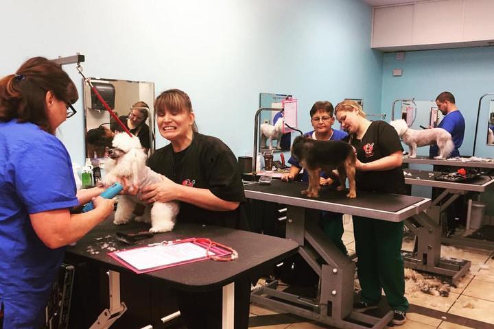 Pet Friendly American Grooming Academy