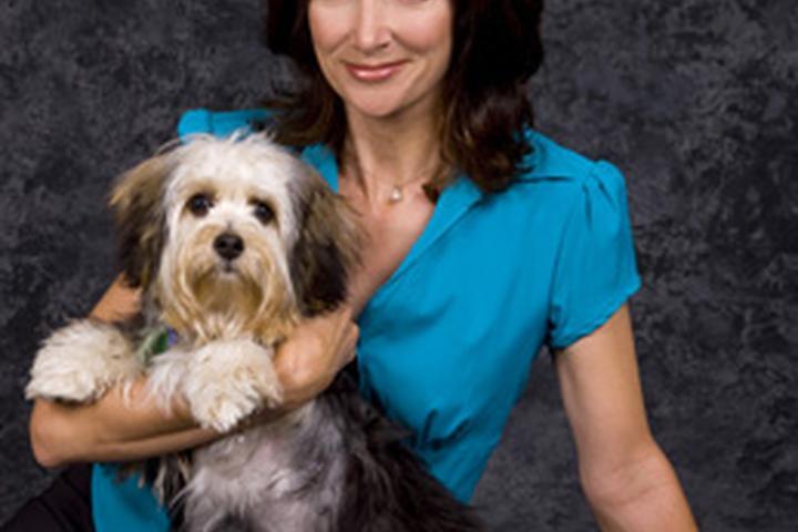 Pet Friendly Amy Robinson Dog Training