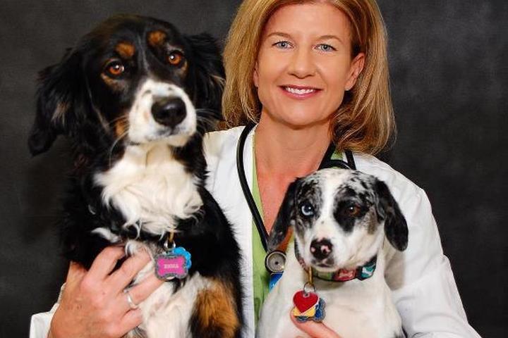 Pet Friendly Monroe Animal Hospital