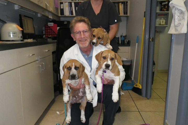 Pet Friendly DeBary Animal Clinic