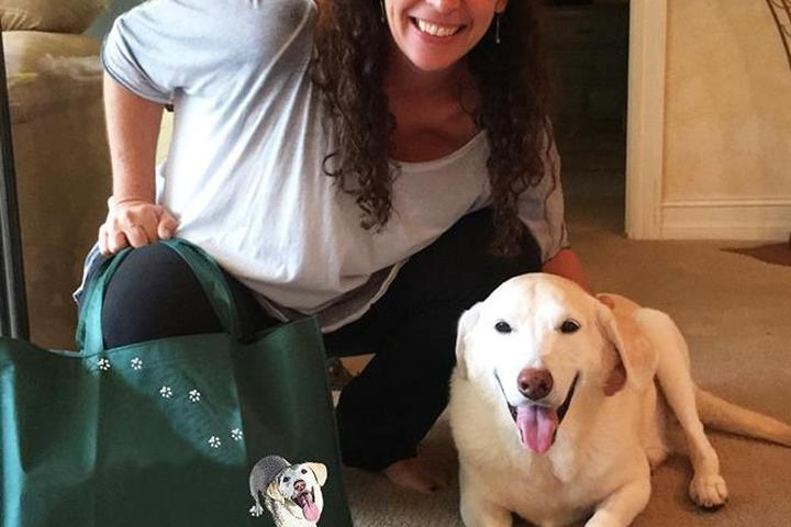 Pet Friendly Canine Care Massage Therapy