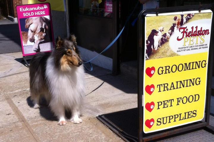 Pet Friendly Fieldston Pets