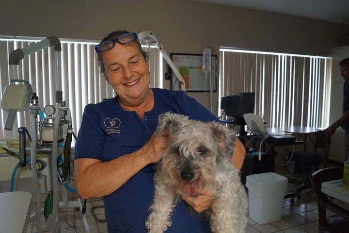 Pet Friendly Heart of Florida Animal Hospital and Pet Resort