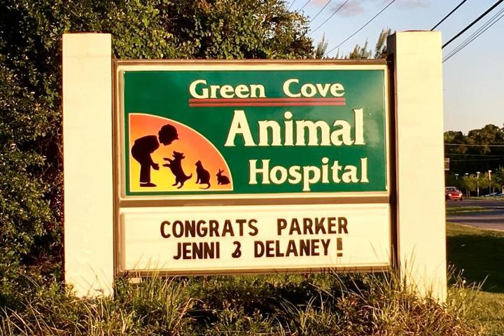 Pet Friendly Green Cove Animal Hospital