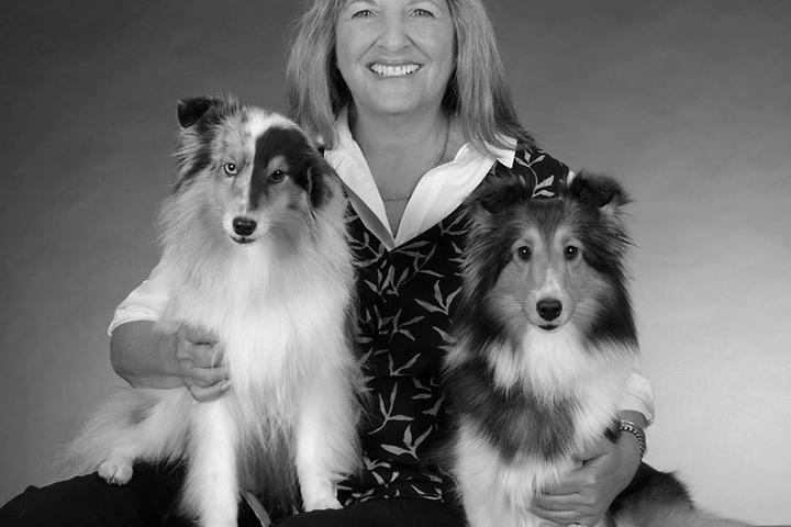Pet Friendly Positive Motivation Dog Training, LLC