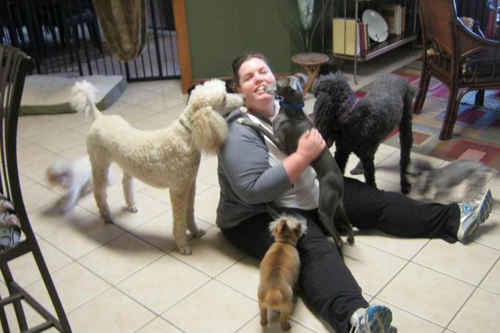 Pet Friendly Pets & Petals