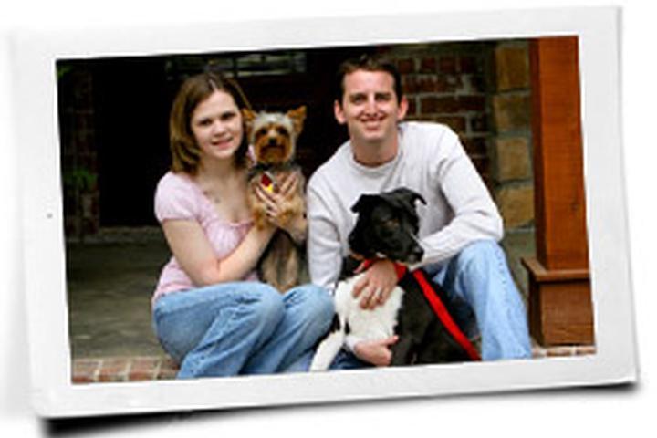 Pet Friendly Clearview Pet Care Centre