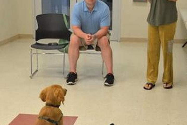 Pet Friendly Purely Positive Dog Training