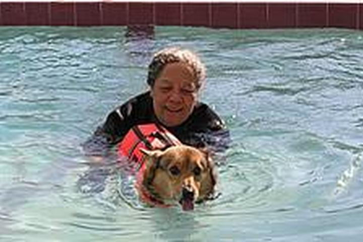 Pet Friendly Hip Dog Canine Hydrotherapy & Fitness