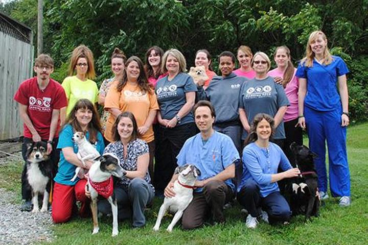 Pet Friendly Hanging Rock Animal Hospital