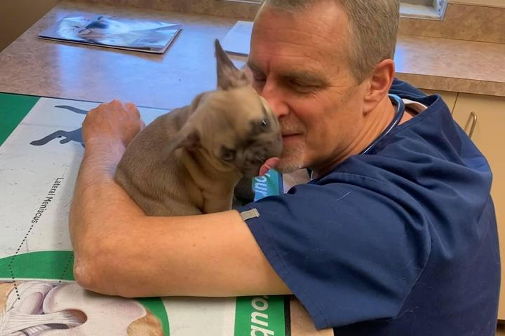 Pet Friendly Suttons Bay Animal Hospital