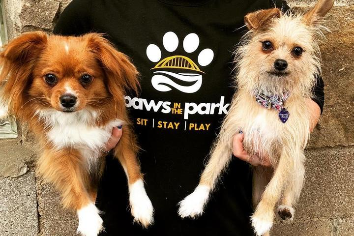 Pet Friendly Paws in the Park