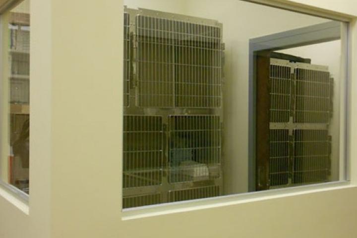 Pet Friendly Vickery Animal Hospital