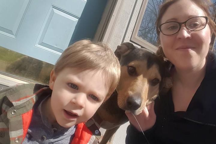 Pet Friendly DoggieDash, LLC