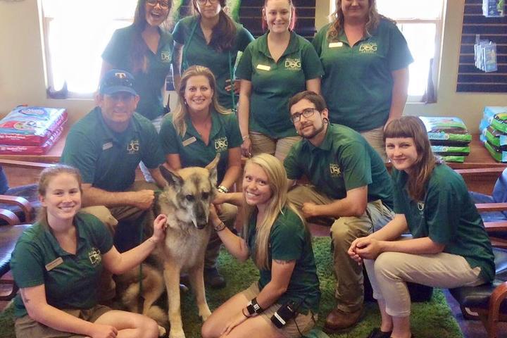 Pet Friendly Action Pack Dog Center