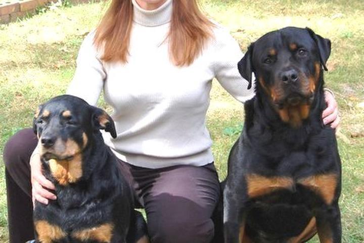Pet Friendly Dominion Dog Training