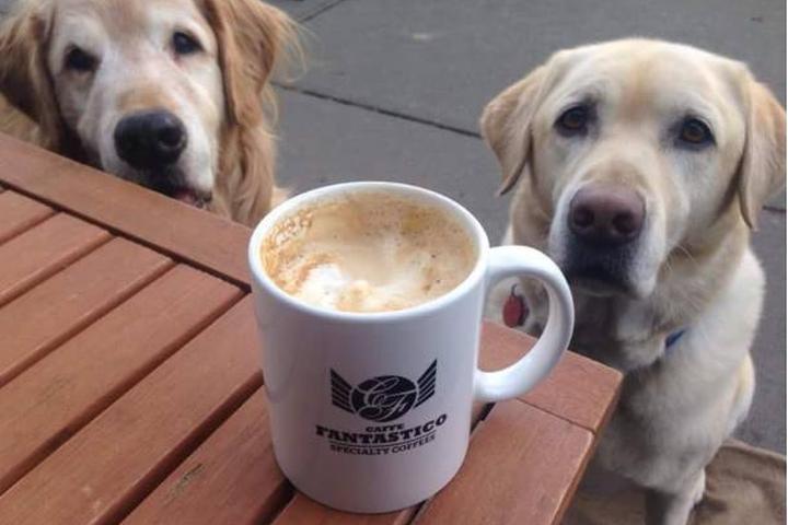 Pet Friendly Caffe Fantastico
