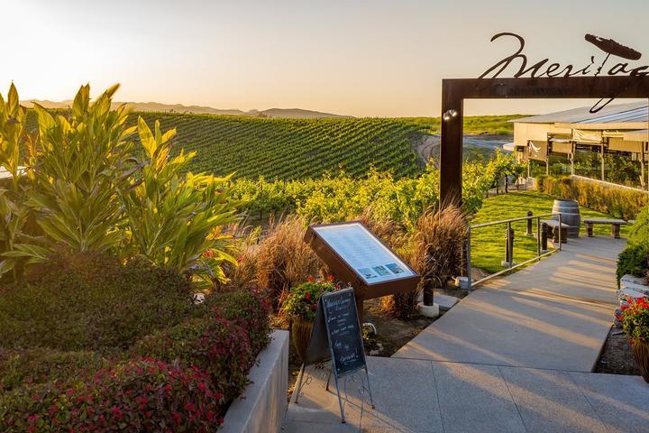 Pet Friendly Meritage Restaurant at Callaway Winery