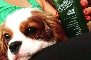 Pet Friendly Southern Pressed Juicery
