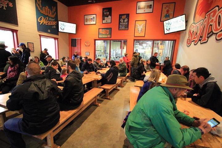 Dog Friendly Restaurants In Phoenixville Pa Bring Fido