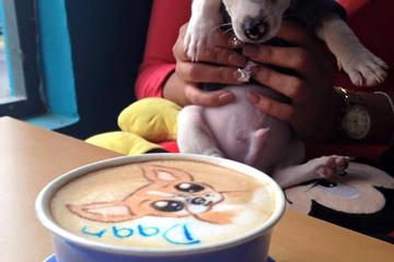 Pet Friendly Coffee & Pet's Deli